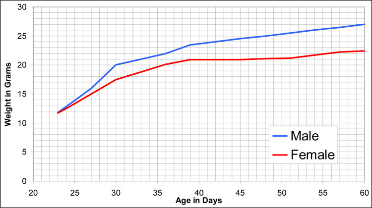 Growth Chart for the IRCF1