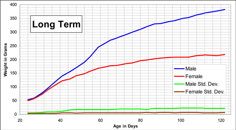Hilltop Lab Animals Inc Lewhla Growth Chart