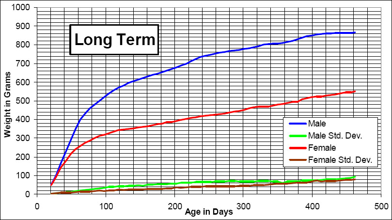 Long Term Growth Chart For The Wistar Rat